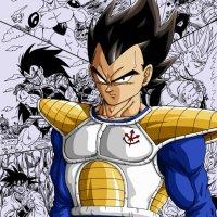 Vegeta ou la meilleure évolution d'un personnage dans toute l'histoire des mangas