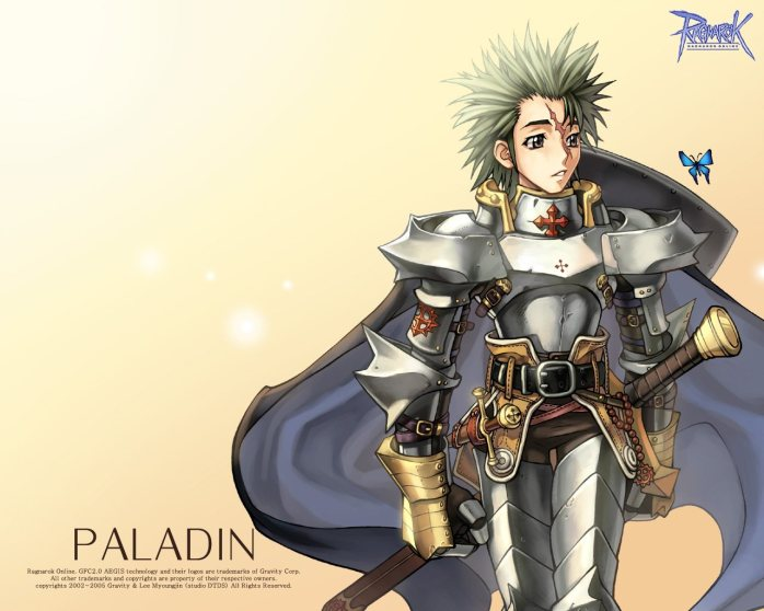 Homme Paladin