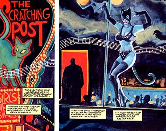Selina Kyle Catwoman Batman Thrillkiller.jpg